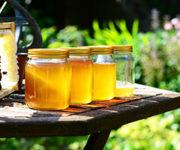 honey-352205_300